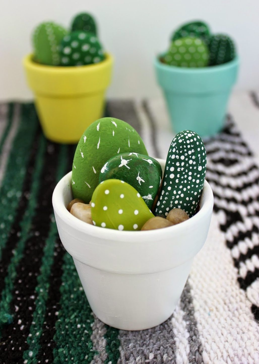 17 Crazy About Cactus Projects
