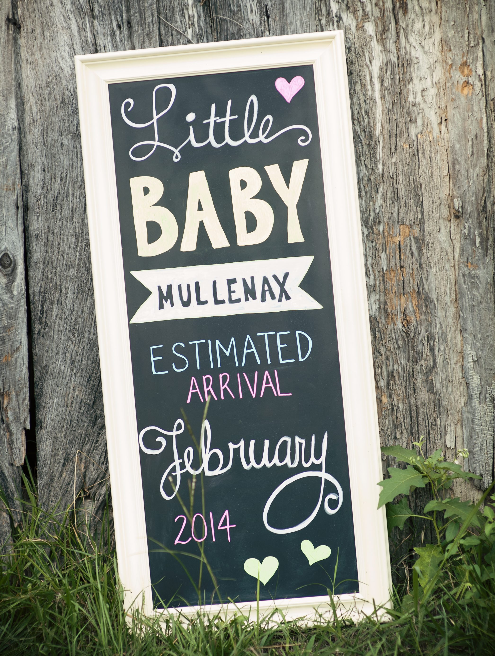 27 Pregnancy Sibling Announcement Ideas