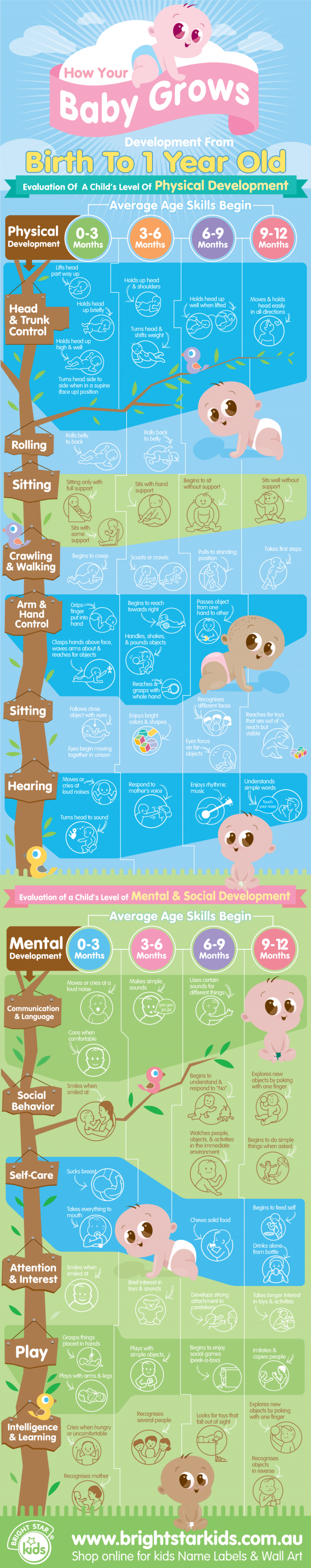 BSK-BabyGrowth-Infographic1